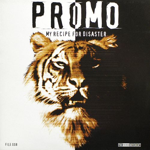 Promo - My Recipe For Disaster